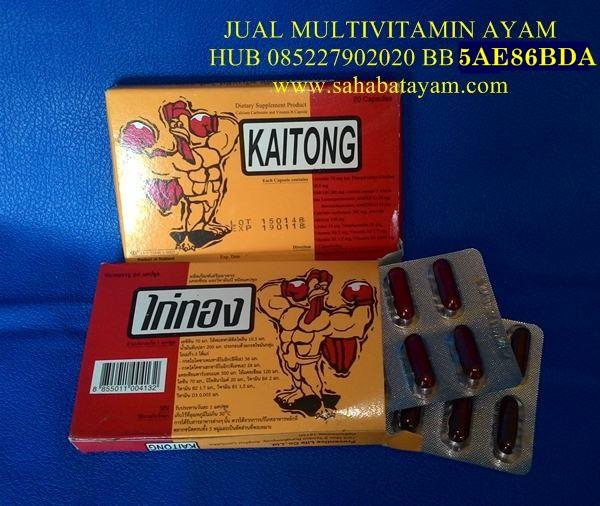 Jual Vitamin Ayam Kaitong