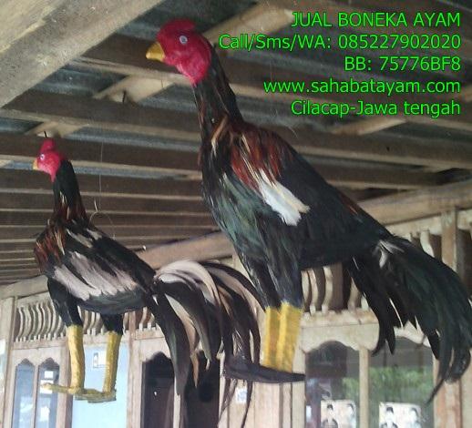 Aksesoris Ayam Bangkok Alat Latih Ayam Lainnya Boneka Ayam Aduan