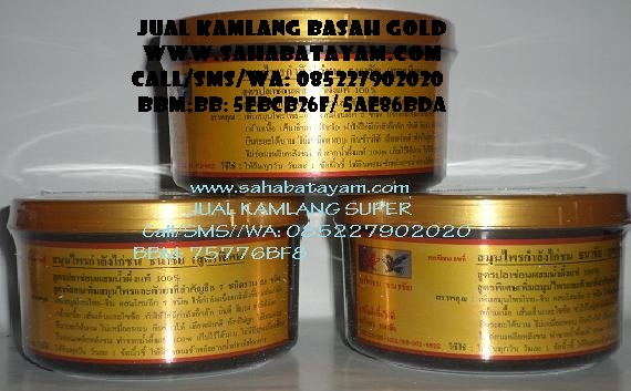 Kamlang basah super gold